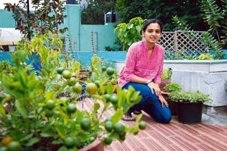 Terrace Garden Ideas Bangalore bangalore bhath | under the same roof - livemint
