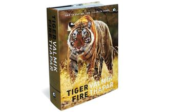 photo essay on the tiger s turf livemint tiger fire 500 years of the tiger in by valmik thapar aleph 597 pages rs 2 995