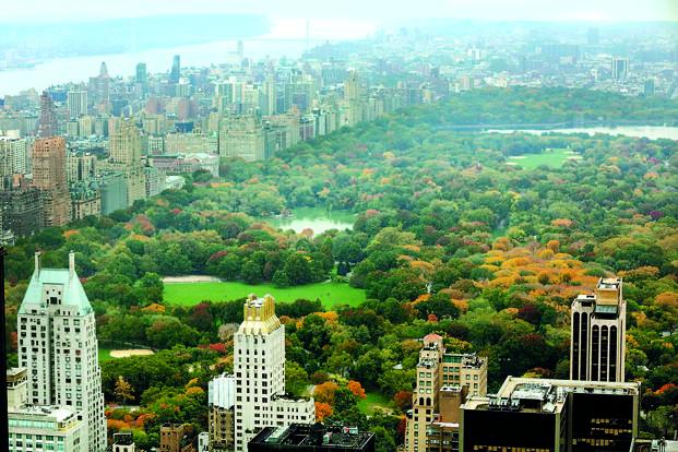 new york city insider guide pdf