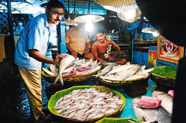 12 stops 50 markets livemint for Fresh fish shop near me