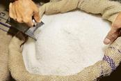 Sugar imports by India seen jumping as prices plunge on glut