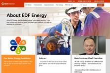 A screen grab of EDF website.  EDF is taking over the long-delayed project, which could become the world's biggest nuclear contract, from fellow French state-controlled group Areva, which will sell its reactor arm to EDF later this year.