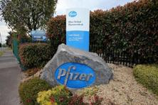 Pfizer and Allergan were reviewing the treasury department's announcement Monday night. Photo: AFP