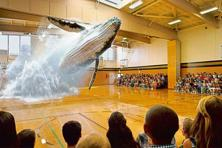 A projection of a whale, developed by Magic Leap. Photo: Courtesy Magic Leap