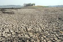 Over 330 million people are affected by drought in India. Photo: HT