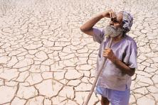 Uttar Pradesh declared eight districts (seven of them in Bundelkhand) drought-hit, a much-delayed move, according to the ruling Samajwadi Party's political rivals. Photo: Reuters