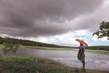 The monsoon has slowed over Karnataka and is expected to reach Maharashtra in the next 3-4 days. Photo: Vivek Nair/HT