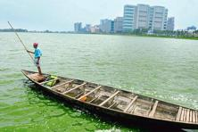 Rajarhat, in the backdrop, was built on land reclaimed from the East Kolkata Wetlands. Photograhs: Indranil Bhoumik/Mint