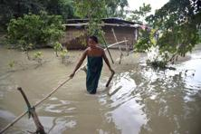 A Bodo tribal woman crosses flood waters along a bamboo bridge in the flood affected Bordiya Kacharigoan village in Morigoan district, some 70 kms from Guwahati, in Assam. Photo: AFP