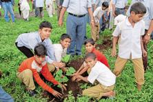 Children plant a sapling as part of Mahindra Haryali project.