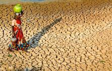 In states like Jharkhand, Rajasthan, Delhi, Gujarat and Goa, more than 50% of land is under desertification. Photo: PTI