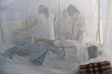 Medical staff examine dengue patients in beds covered with a mosquito net in the dengue ward of a civil hospital in Amritsar . Photo:AFP