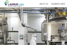 Laurus Labs proposes to use the net proceeds from the IPO towards pre-payment of term loans and general corporate purposes.