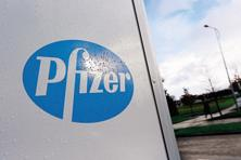 Shares of Pfizer rose 0.65% and were trading at 1822.60 at 2.42pm on BSE, while the benchmark Sensex was up 0.26% to 26,418.78 points. Photo: Reuters