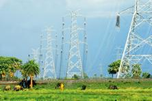 The September quarter results of power firms show they have ample room for improvement, at least so far as utilization is concerned. Photo: Indranil Bhoumik/Mint