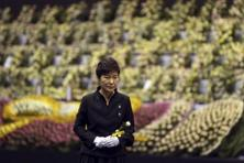 Park Geun-Hye instantly became a star among older conservative Koreans, who felt she shared her father's leadership qualities and was someone who could revive the economy at a time of crisis. Photo: AP