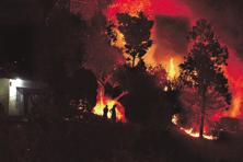 As per official records, until 31 May, 2,060 incidents of forest fire were reported across Uttarakhand, affecting more than 4,400 hectares. Photo: HT