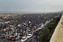 In a unique and peaceful protest, over 5,000 mostly young pro-Jallikattu people gathered on Chennai's Marina beach last week. Photo: PTI