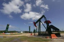 Crude oil futures were weighed down by a resurgence in US shale oil production and the expectation that inventories in the country would once again build. Photo: Reuters