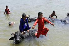 Children play with buffaloes in the River Tawi on a hot summer day in Jammu, on Thursday. Channi Anand/AP.