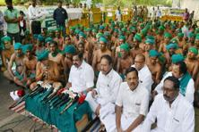 Tamil Nadu govt response comes just days after farmers from Tamil Nadu temporarily called off their 40-day protest in the national capital. Photo: PTI