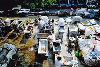 Chilamchis or cement tubs, are spread across the open space of the dhobi ghat. Also visible are the circular pools called naandis. Photo: Priyanka Parashar/Mint