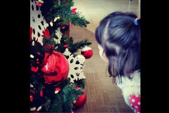 Happiness is... playing with a shiny Christmas Tree!