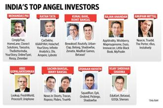 India's top angel investors and the companies they have invested in.