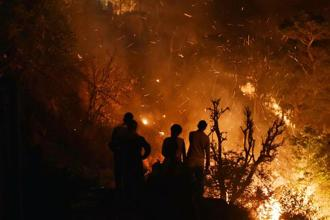 "Photographs of the wildfire may have set the social media abuzz, but the ""expert"" comments on the natural disaster remain off the mark. Photo: HT"