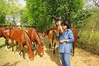 Ameeta Mehra with yearlings at the Usha Stud Farm in Gurgaon. Photographs by Pradeep Gaur/Mint