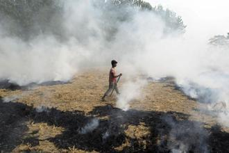 The annual stubble burning ritual is only one of the many symptoms of the crisis facing Indian farmers. Photo: AFP