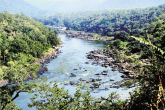 A file photo of Cauvery river. Photo: Mint