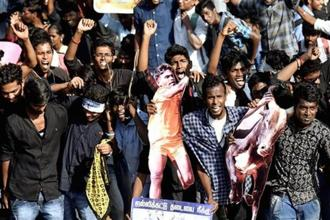 Jallikattu protests continued for the third consecutive day on Wednesday, in Chennai and various districts in Tamil Nadu, urging the state and the Centre to repeal the ban on bull-taming sport and demanding that Peta, an animal rights organization, be banned. Photos: PTI