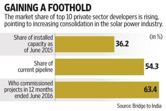 Scale economics drive smaller firms to the margins in solar power