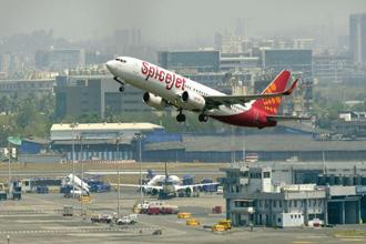 Why have SpiceJet shares done better than IndiGo's?