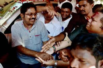 AIADMK (Amma) leader T.T.V. Dinakaran says he will continue to remain in the party and carry out his duties as usual. Photo: PTI