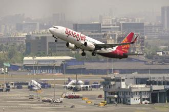 SpiceJet, with about 50 planes, controls 14% of the domestic market share. Photo: Mint