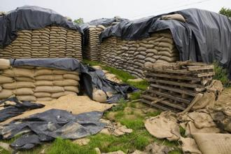 A file photo of sacks of foodgrain in Punjab. The CAG audit of Food Corporation of India (FCI) flagged several loopholes in the public distribution system, such as wastage of foodgrain, high payments to labourers and avoidable interest expenses due to delay in release of food subsidy funds by the government. Photo: Mint