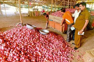 Retail onion prices have soared up to Rs50 per kg in major cities in view of tight supplies during monsoon season. Photo: Mint
