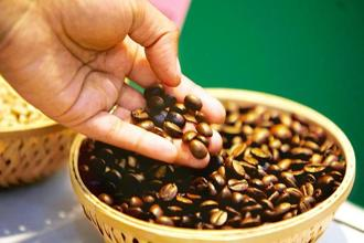 India, famous as a tea producer, is also the world's no.6 coffee grower. Photo: Reuters