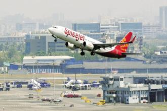 The airline reported a net profit of Rs430.7 crore for the year ended March 2017. Photo: HT