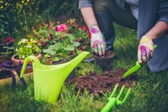 Cultivate a hobby and make it an integral part of your life. Photographs: iStockphoto