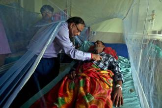 The new Asian genotype of DENV-1 was found in virus isolates drawn from blood samples of dengue-infected patients in southern India, the scientists said. Photo: PTI