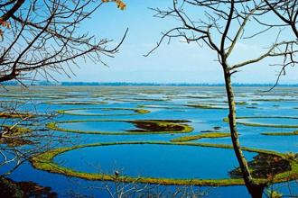 Loktak lake and Keibul Lamjao NationaL Park, Manipur. Photo: Alamy