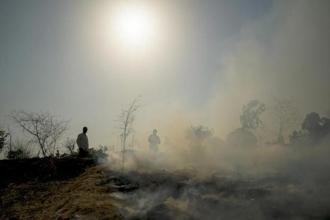 The NGT had warned the governments of 5  northern states that it would stop payment of salaries of their officials if they failed to come up with an action plan to prevent stubble burning. Photo: Aniruddha Chowdhury/Mint