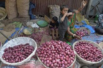 Cooperative Nafed has started procuring onions directly from farmers for distribution in consuming areas. Photo: AFP