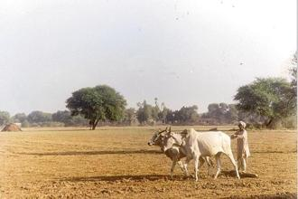 That FM Arun Jaitley's first pre-budget discussion was on agriculture signals that rural sector will be a central focus of Union Budget 2018, the last before Elections 2019. Photo: HT