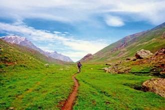 The meadows of Miyar Valley. Photo courtesy Whitemagicadventures.com