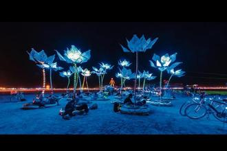 'Pulse And Bloom' at Burning Man in 2014. Photo: Artists