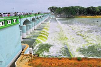 On 16 February, the Supreme Court, while delivering the Cauvery water dispute order, directed Karnataka to release 177.25 thousand million cubic feet (tmcft) of water to Tamil Nadu. Photo: PTI